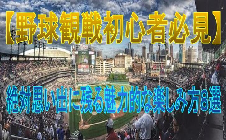 野球観戦の俯瞰図